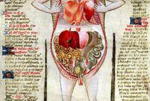 raresas medievales