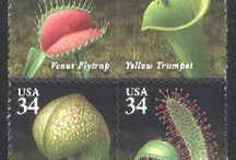 Stamps botany
