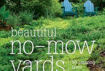 zahrada bez travnika