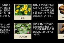 """LUZI<ルーツー> オリエンタルハーブティー / ここ10年でガラリと変わった日本人の食生活の欧米化。この日本人体質と食事のアンバランスをサポートするお茶""""オリエンタルハーブティー""""。冬虫夏草を配合し、また日本人の腸と胃を力強くサポートする""""ヤマノイモ""""も配合。クコや西洋人参も配合しています。お味は飲みやすい紅茶味。クセがないのでお食事とも一緒にいただける! 1包で約1.5リットルのお茶が作れて、お子様も旦那様も家族全員で楽しみながら体調を整えるLUZI<ルーツー>ならではのハーブティーです。"""