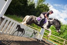 Equestrian Centre / Cottingham Parks has a full equestrian programme, catering for all abilities
