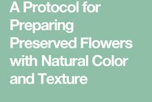 Flower Preservation Methods