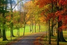 Country Side: Autumn