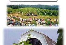 Hey That's Us! / by Millbrook Winery