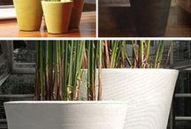 PLANTERS / Lobby planters