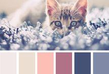 farby / inspiracie z prírody a života