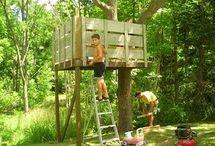 tree house / by Evonne Hacker
