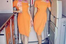 Flight Attendant / Air Hostess Stewardess