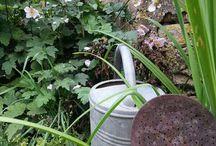 Jardin et potager de charme