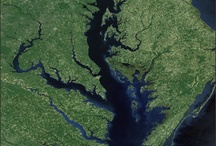 Chesapeake Bay Pride / by Chesapeake Bay Trust