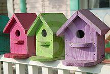 Birdhouses, doors, fairies, & dragonflies / by Coral Coombs