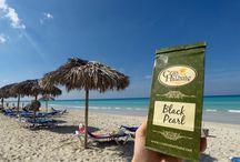 Herbata ciekawa świata na Kubie