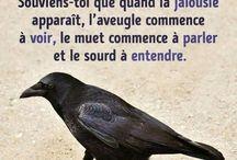 The Love Quotes Jealousy Quotes : Ne parle pas trop de toi aux autres. Souviens-toi que quand la jalousie apparaî…