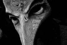 plague/skull