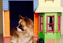 Disney Pixar Up Doghouse / Niche pour chien sur le thème du film d'animation Là-haut