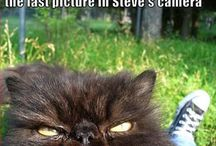 Смешно и мило :)