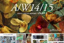 A/W 2014 trends