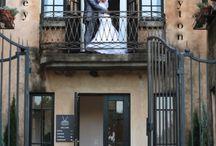 Avianto Unique Wedding - Haley & Clayton