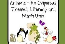School - Oviparous