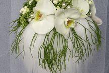 λουλουδια- νυφη