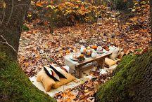 Craving Fall