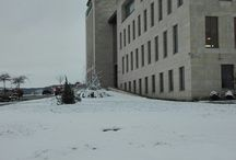 school&university