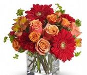 Thanksgiving Flowers at The Frugal Flower / Enjoy the warmth of the season with a bountiful harvest themed flower arrangement and allow us to make this Fall memorable. Accent your house with a beautiful floral design arranged in a vase or decorate the home of a loved one with a stunning centerpiece for a dining room table, credenza, or foyer that can be admired by all. If you are unable to attend an autumn gathering, show your appreciation by sending a bountiful basket of fruits and gourmet treats that are sure to please anyone.