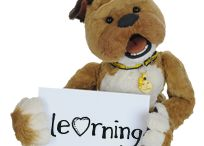 Learn With Dogs Trust / Educating Young People About Dog Ownership