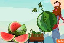 Как выращивать арбузы