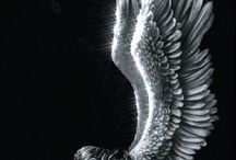 Angel Wings Delights / We just love angels, after all they are pretty magical, just like our own MeroWings...