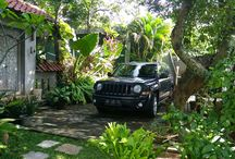 My Jeep Patriot