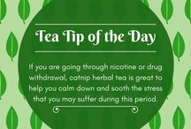 Tea Tips / Quick tips about herbal infusions and all types of tea.