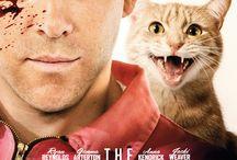 Des chats et des films / Chat alors ?!