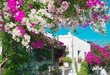 Turkey, Bodrum