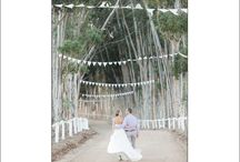 Destination Wedding South Africa / by blfStudios Fine Art Wedding Photography