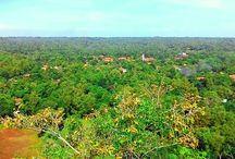 Jaddih Hill , Indonesia / My Trip
