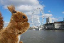 Eichhörnchen auf Reisen / Eichhörnchen lieben nicht nur Walnüsse, sondern auch das Reisen! Mit dabei ist natürlich immer der Reiseproviant. Erratet Ihr wo das Eichhörnchen schon überall war?