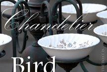 Bird feeders/baths