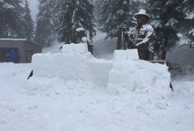 Snow Sculptures / I joined the Grouse Mountain Snow Sculpting Team in 2016.