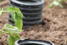 Garden  Growing Tips and Misc / All things gardening
