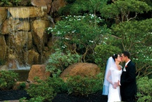 Wedding Venues / Venues in Orlando and the surrounding areas / by S0uthernGirl