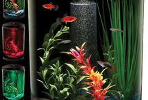 Pick One of Unique Aquariums Design Ideas for Your Fish