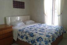 Homestay di Wonosobo / OWK Homestay,  Jl. Lurah Sudarto Km. 01 Wonosobo  Telp. (0286) 3320078, 0812-266-1429