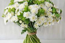 Букеты. Цветы