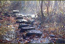 Hiking trails/places