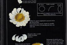 Malowanie kwiatów  i nie tylko do decoupage