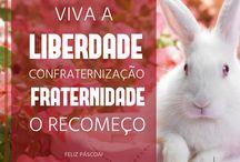 ➽ Páscoa (>•.•<) / Peças publicitárias da campanha de Páscoa 2017.
