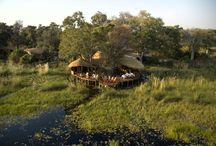 Botswana Camps & Lodges