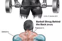 Schulter nacken