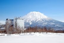 Niseko Now! ニセコスナップ / Find what's happening in Niseko  ニセコ情報を写真でご紹介します